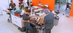 """""""Vétérinaires : leur vie en direct"""" : la saison 2 arrive sur TF1, les 1ères images (vidéo)"""