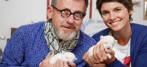 Chiots, chats : les premiers pas de nos animaux préférés lundi 12 février sur France 3