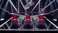 """Les dernières auditions à l'aveugle de """"The Voice Kids"""" à suivre ce soir sur TF1 (vidéo)"""