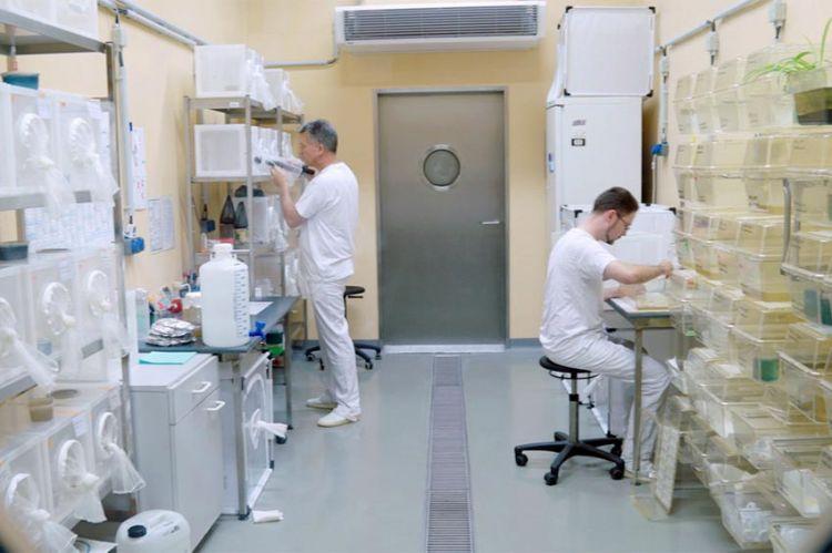 « Virus et épidémies : l'île-laboratoire », samedi 15 mai sur ARTE