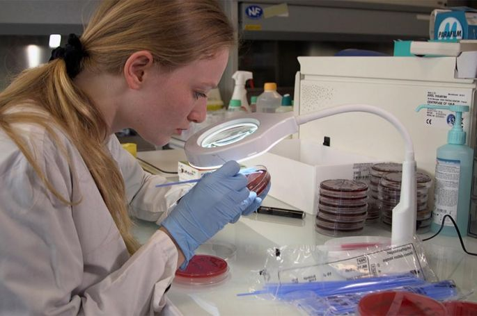 « Microbiote, les fabuleux pouvoirs du ventre », samedi 12 juin sur ARTE (vidéo)
