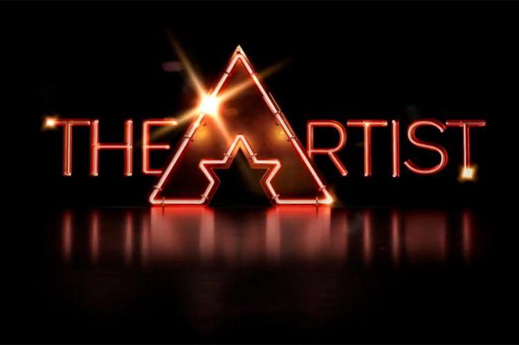 """""""The Artist"""" : le casting du nouveau télé-crochet de France 2 qui sera présenté par Nagui est ouvert (vidéo)"""