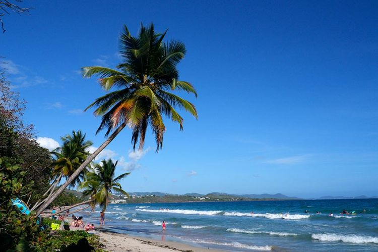 """""""Echappées Belles"""" : « Martinique, cœur caraïbes », samedi 24 octobre sur France 5 (vidéo)"""
