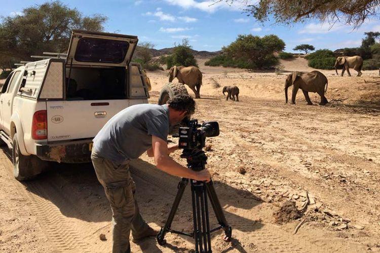 « Kalahari, l'autre loi de la jungle » raconté par Virginie Efira, mardi 9 novembre sur France 2