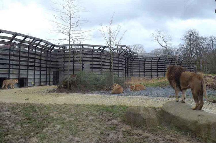 """""""Zone Interdite"""" : immersion au Muséum d'Histoire naturelle ce soir sur M6 (vidéo)"""