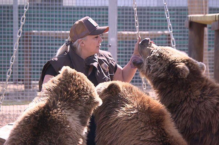 """2ème épisode de """"La Tanière, le zoo-refuge de l'espoir"""", vendredi 21 février sur C8"""