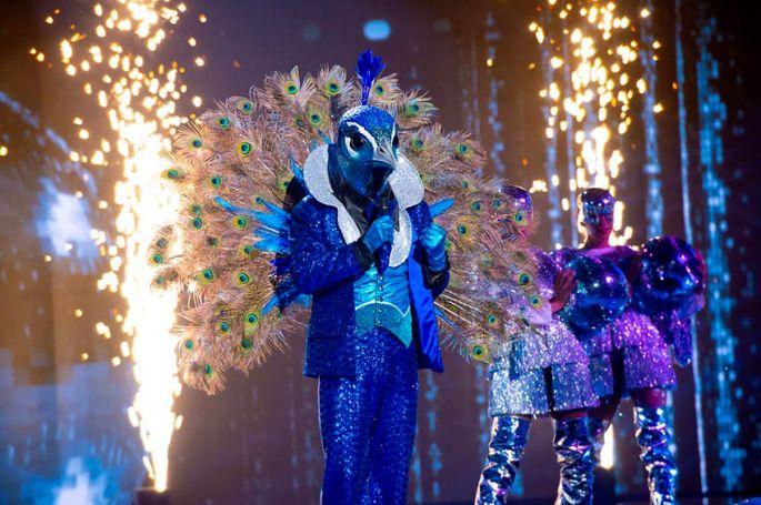 """""""Mask Singer"""" : 1er indices sur Paon, un nouveau personnage à découvrir vendredi soir sur TF1 (vidéo)"""