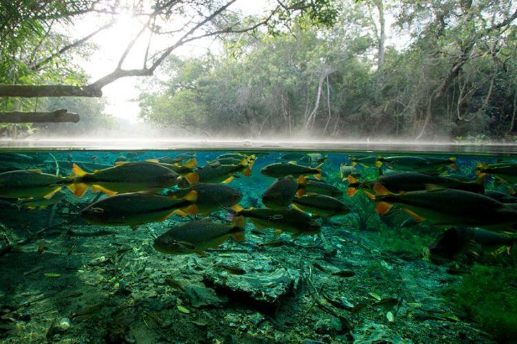 « H2O : l'eau, la vie et nous », série en 3 volets à découvrir sur ARTE samedi 28 novembre (vidéo)