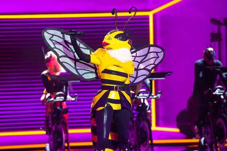 """""""Mask Singer"""" : TF1 dévoile de nouveaux indices sur l'Abeille (vidéo)"""