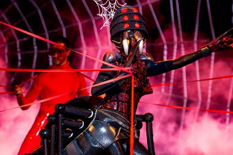 """""""Mask Singer"""" : TF1 dévoile de nouveaux indices sur Araignée (vidéo)"""