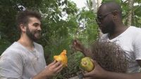 """1ères images de """"L'Aventure Robinson"""" avec Maître Gims & Kendji Girac sur TF1 (vidéo)"""