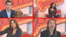 """""""The Voice"""" : Jenifer, Zazie, Mika et Florent Pagny vous présentent leurs vœux pour 2015 (vidéo)"""